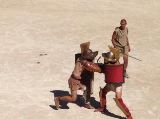 Gladiator-fights